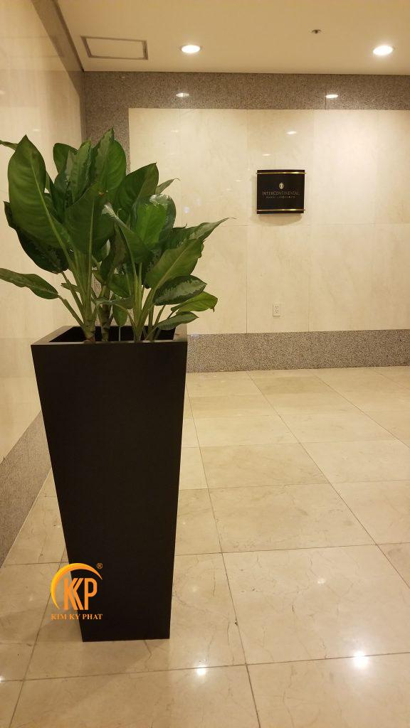 chậu trồng cây composite cao cấp